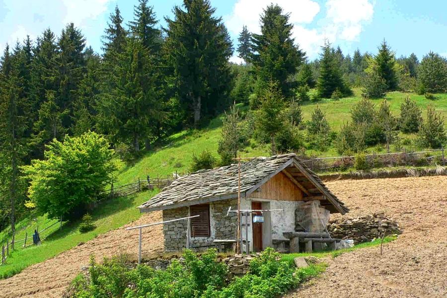 Отдых в Болгарии: планирование маршрута, что посмотреть, полезная информация, отчеты о путешествиях