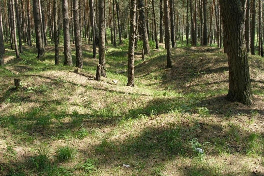 Гнездовские курганы – знаменитый археологический заповедник