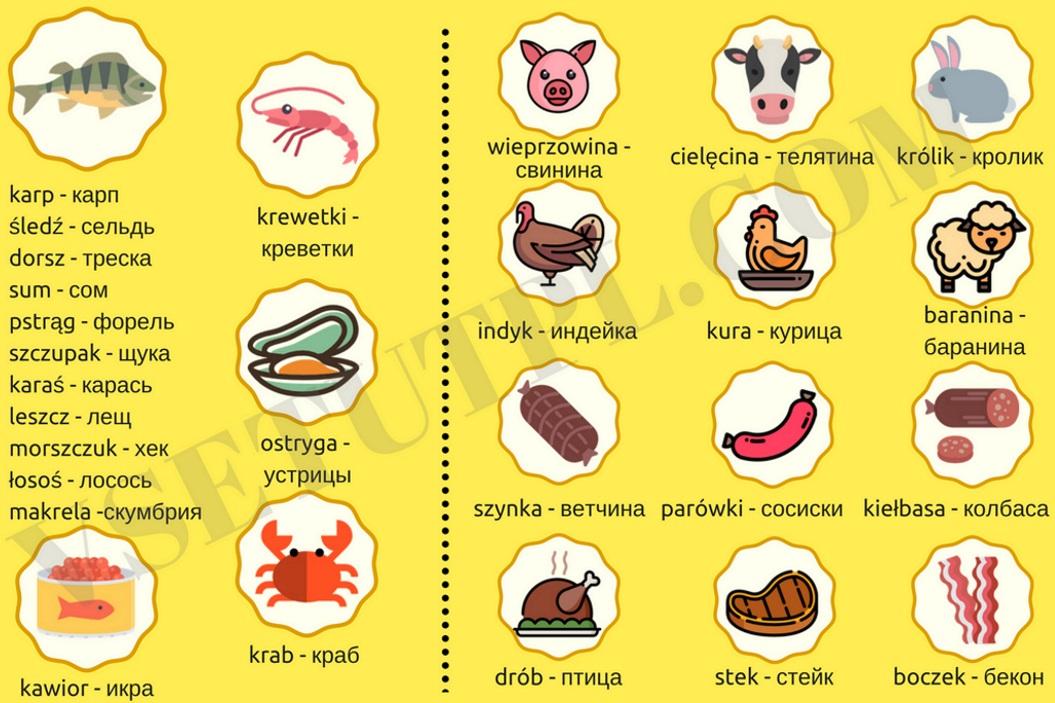 польские слова для туристов с переводом и транскрипцией